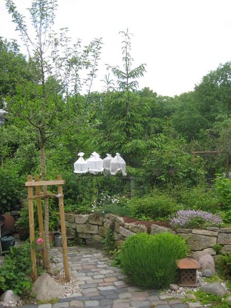 weber gartenplanung leipzig reihenhausgarten in leipzig